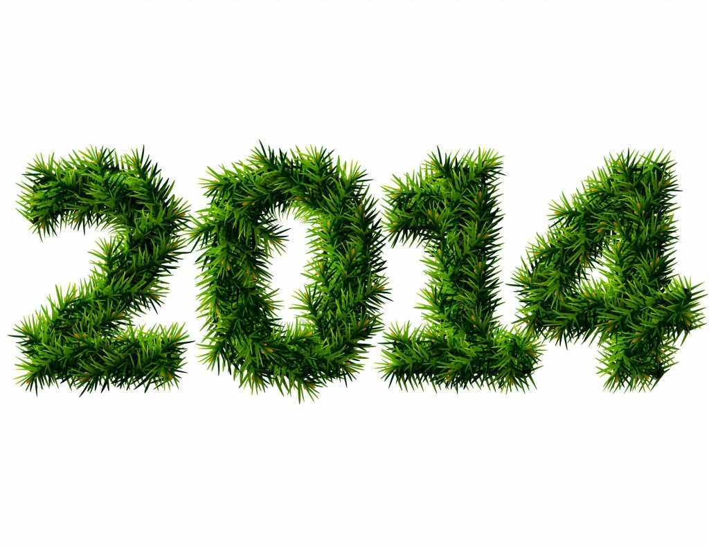 Grassy New Year 2014 HD Wallpaper
