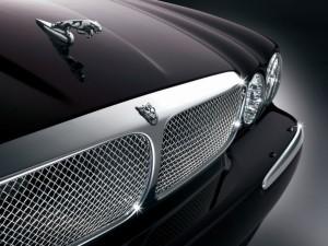 Jaguar Car Logo HD Wallpaper
