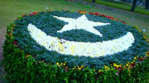 download Pakistani Flag Art with Grass and Flowers-1600x900 Wallpapers