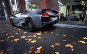 Download Autumn Lamborghini Hd Wallpaper