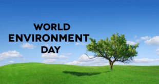World-Environment-Day-wallpaper