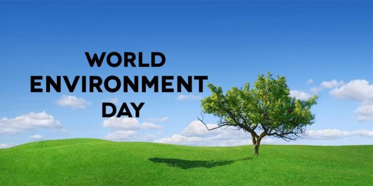 an essay on environment day