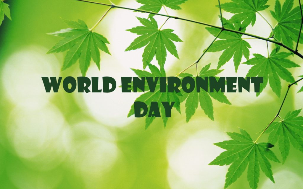 environment-day-plant-save-trees-wallpaperenvironment-day-plant-save-trees-wallpaper