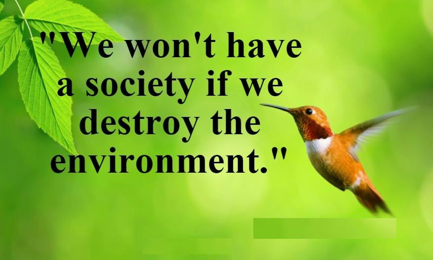 environment-day-quote