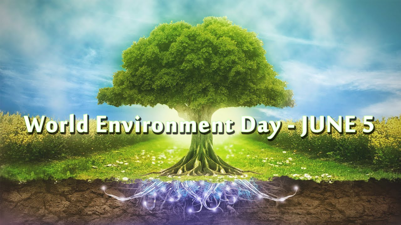 environment day The very first earth day was celebrated on april 22, 1970 the event, which some consider to be the birth of the environmental movement, was founded by united states senator gaylord nelson.
