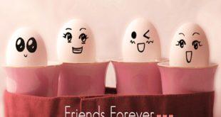 funny-friendsforever