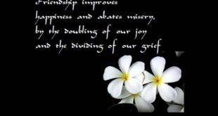 friendship-quote