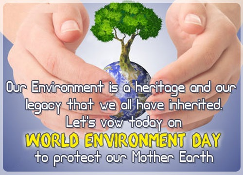 world-environment-day-to-protect-our-mother-land