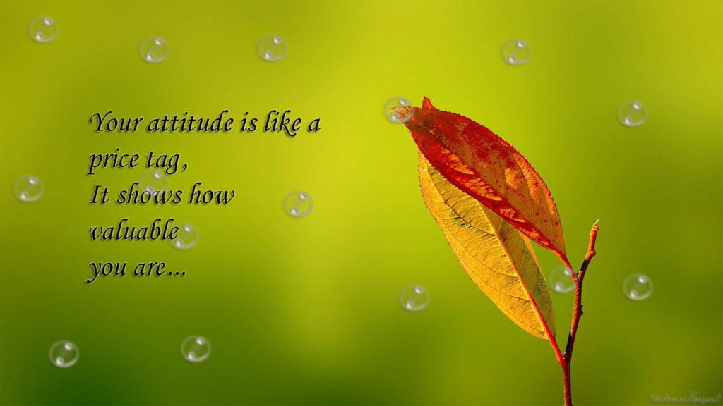 attitude-quote-wisdom