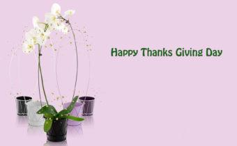 happy-thanks-day