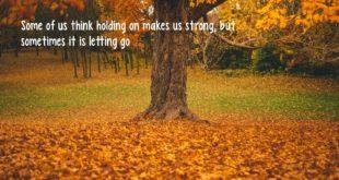 letting-go-make-stronger
