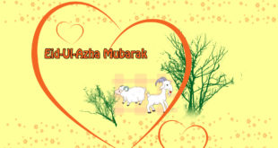 Eid-ul-azha-mubarak-hd-wallpaper-image-2017