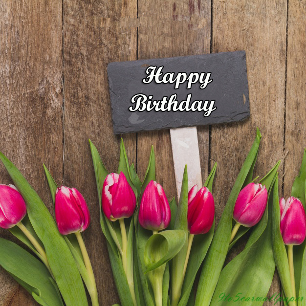 Happy-Birthday-Photos-Images-Hd-Wallpapers-Quotes