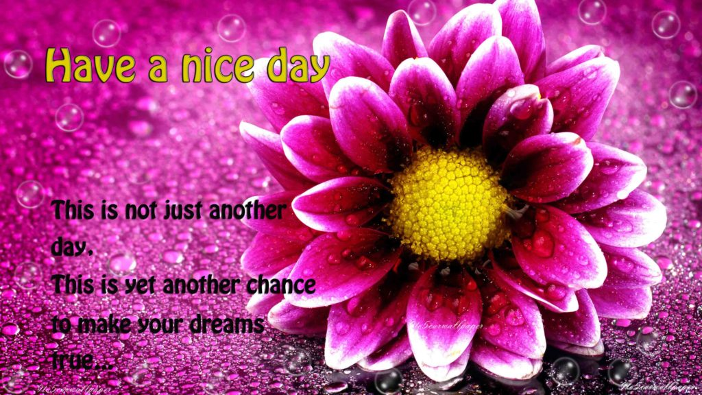 have-a nice-day-images-quotes-2017