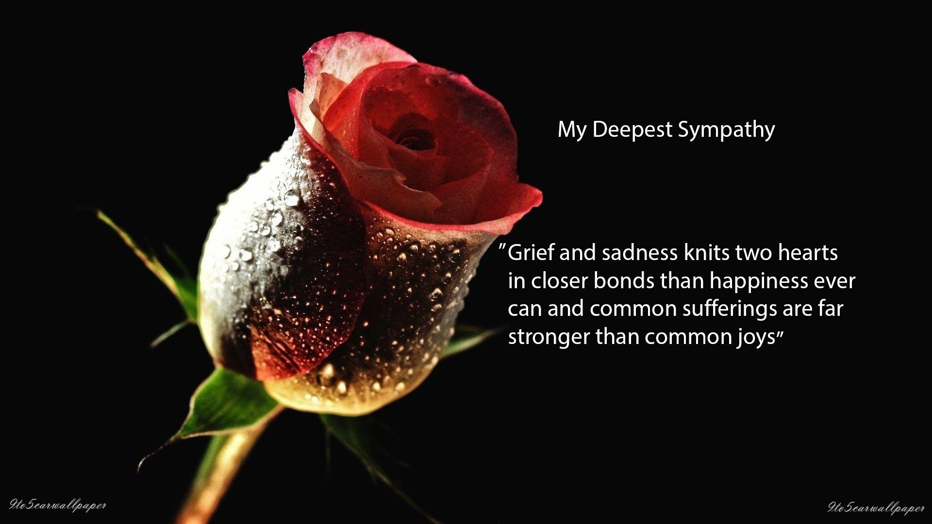 Condolence Quotes | Condolence Sad Quotes Images And Wallpapers