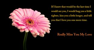 Miss-You-Quotes-Images-Pics-Downloads