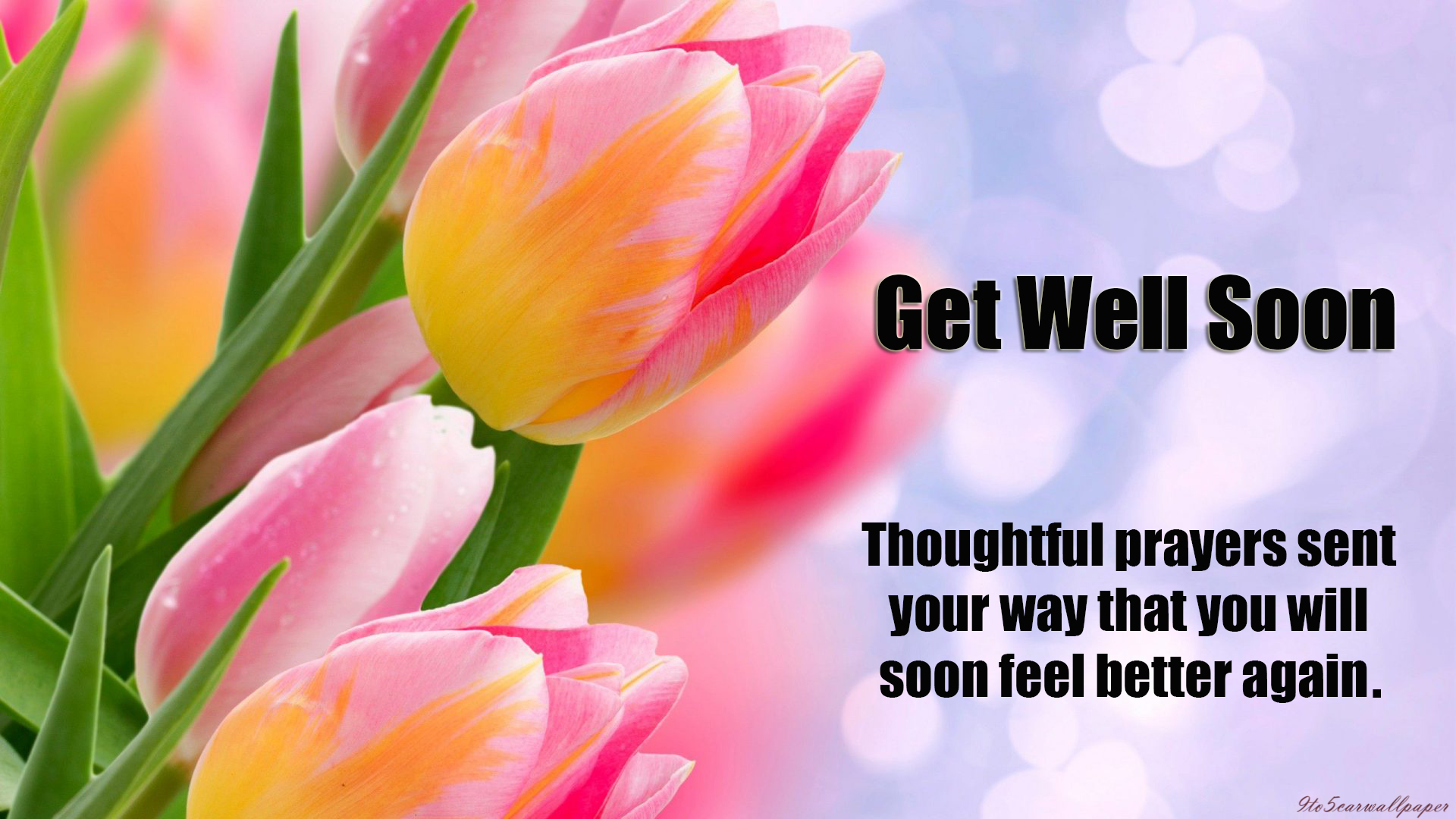 get-well-quotes-2018-wishes-cards-wallpapersget-well-quotes-2018-wishes-cards-wallpapers
