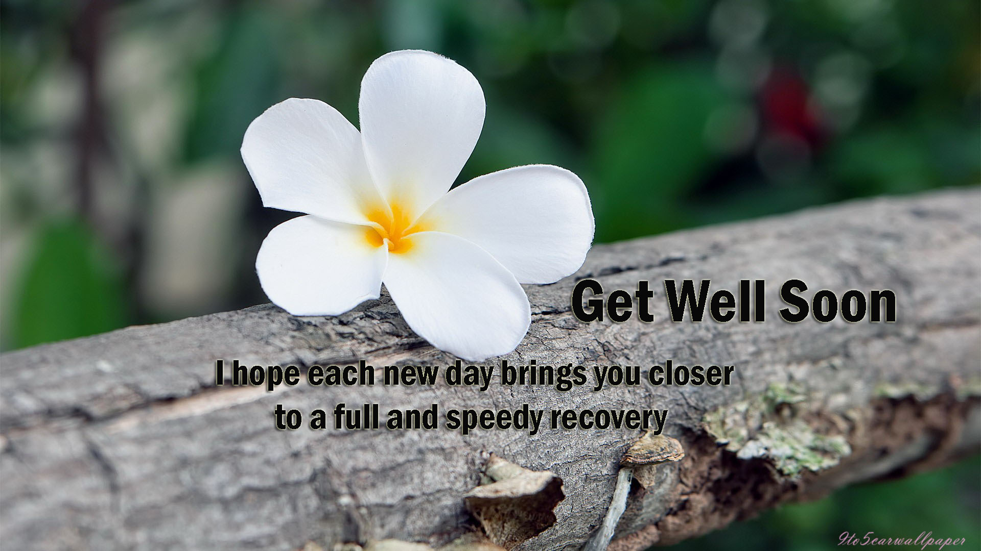 get-well-images-cards-posters