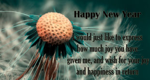 happy-new-year-wishes-2018