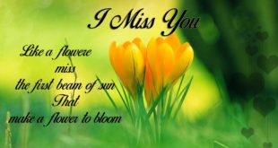 i-miss-you-cards-wishes-posters-images