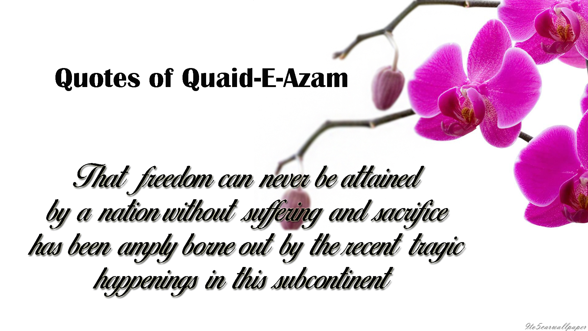sayings-of-quaid-e-Azam-images-quotes-wallpapers-posters-cards