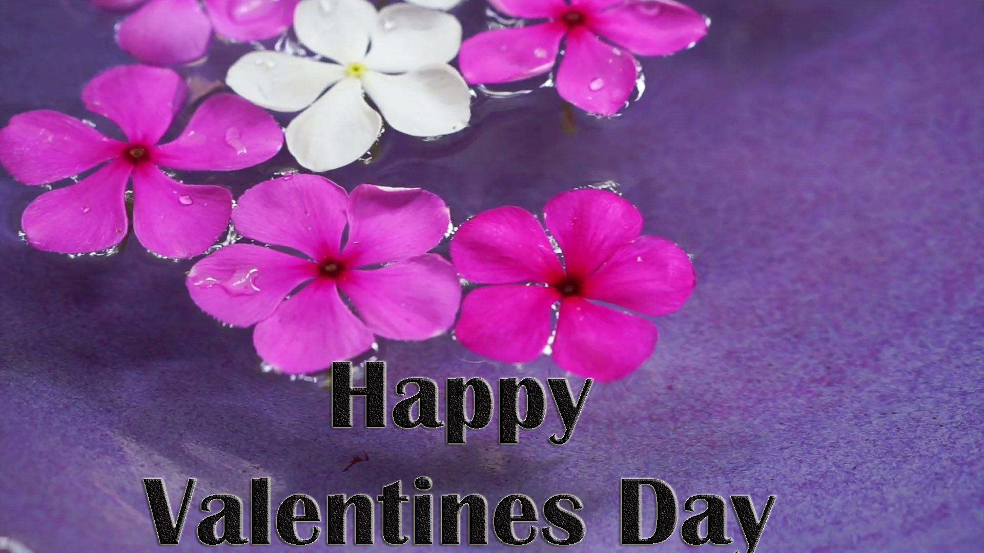 valentines-day-card-images