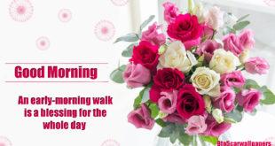 good-morning-greetings2018