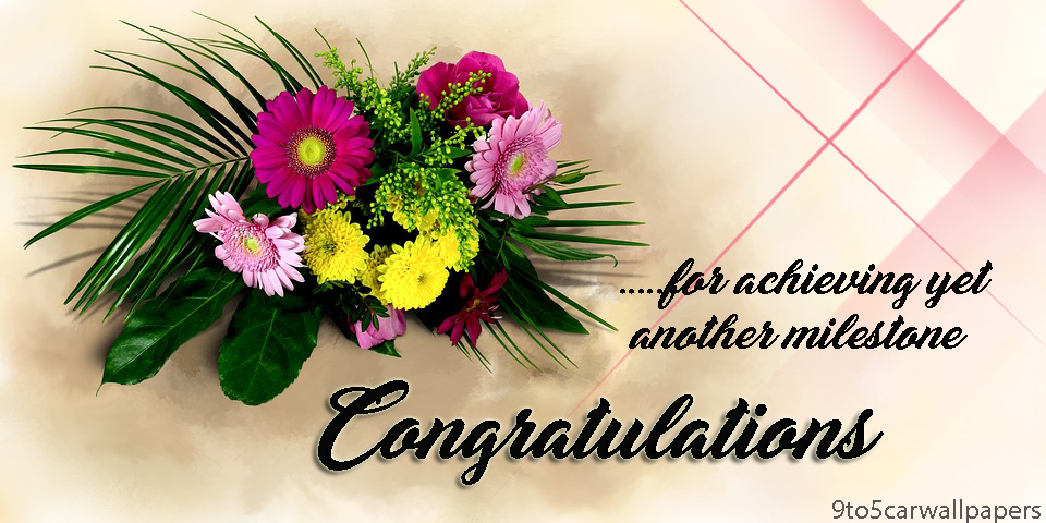 congratulations-wish-card