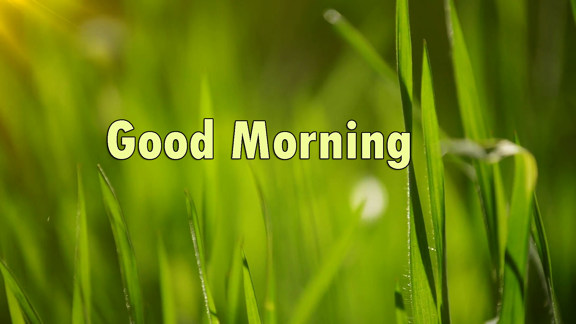 good-morning-images-card