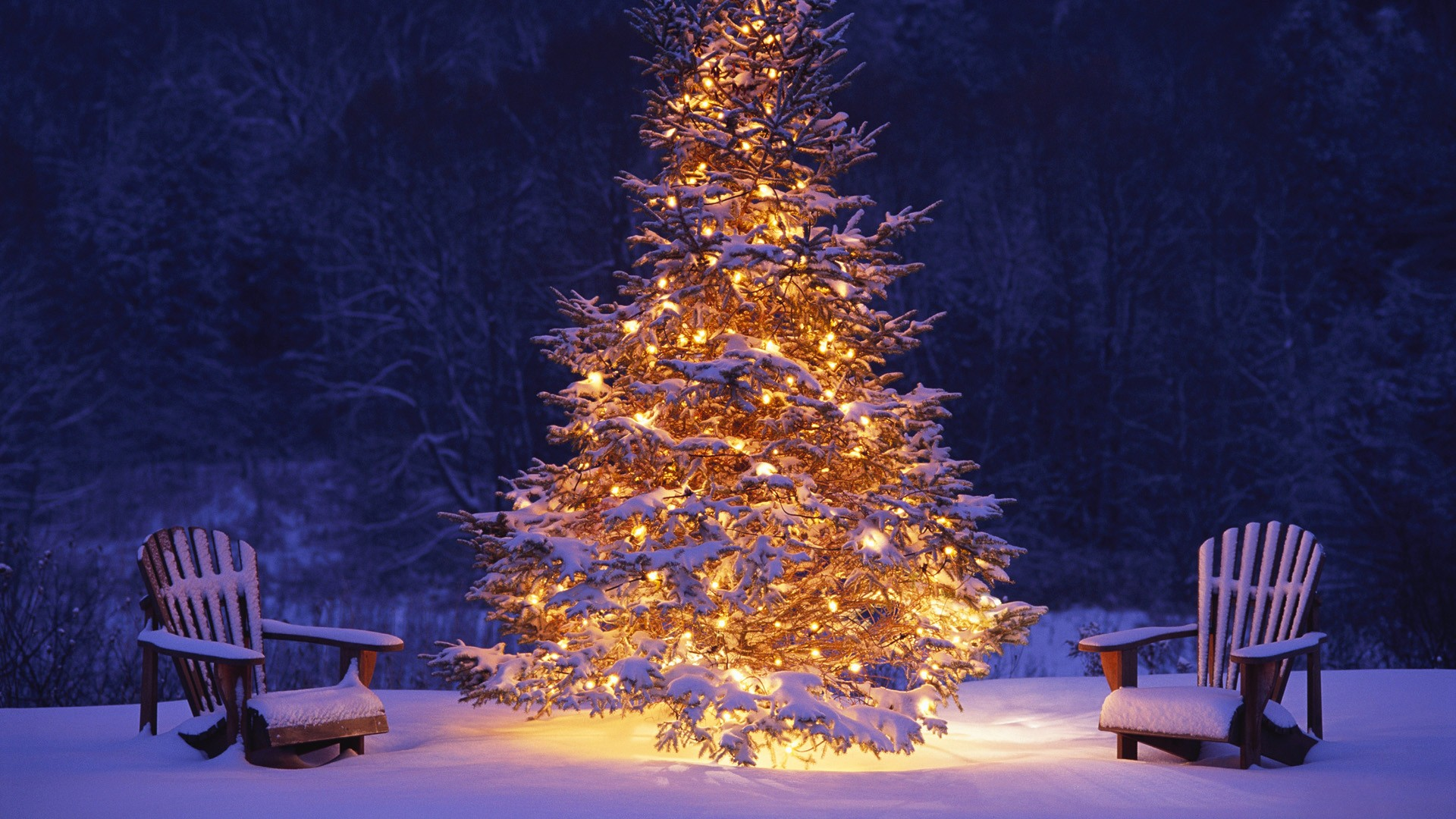 Merry-Christmas-hd-Wallpapers-Images-Free-Download-1