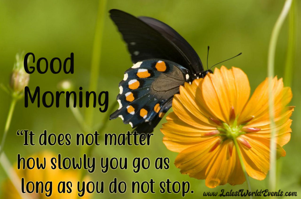 Free-Download-good-morning-images-with-inspirational-quotes-download