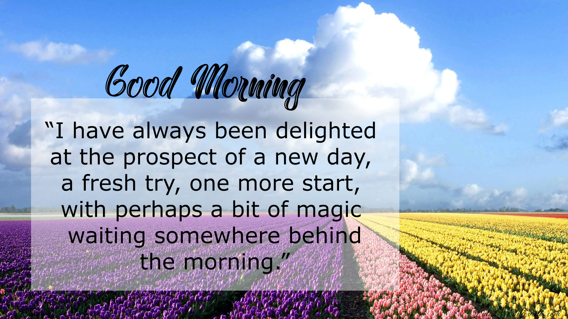 DOwnload-good-morning-messages-for-friends-with-pictures