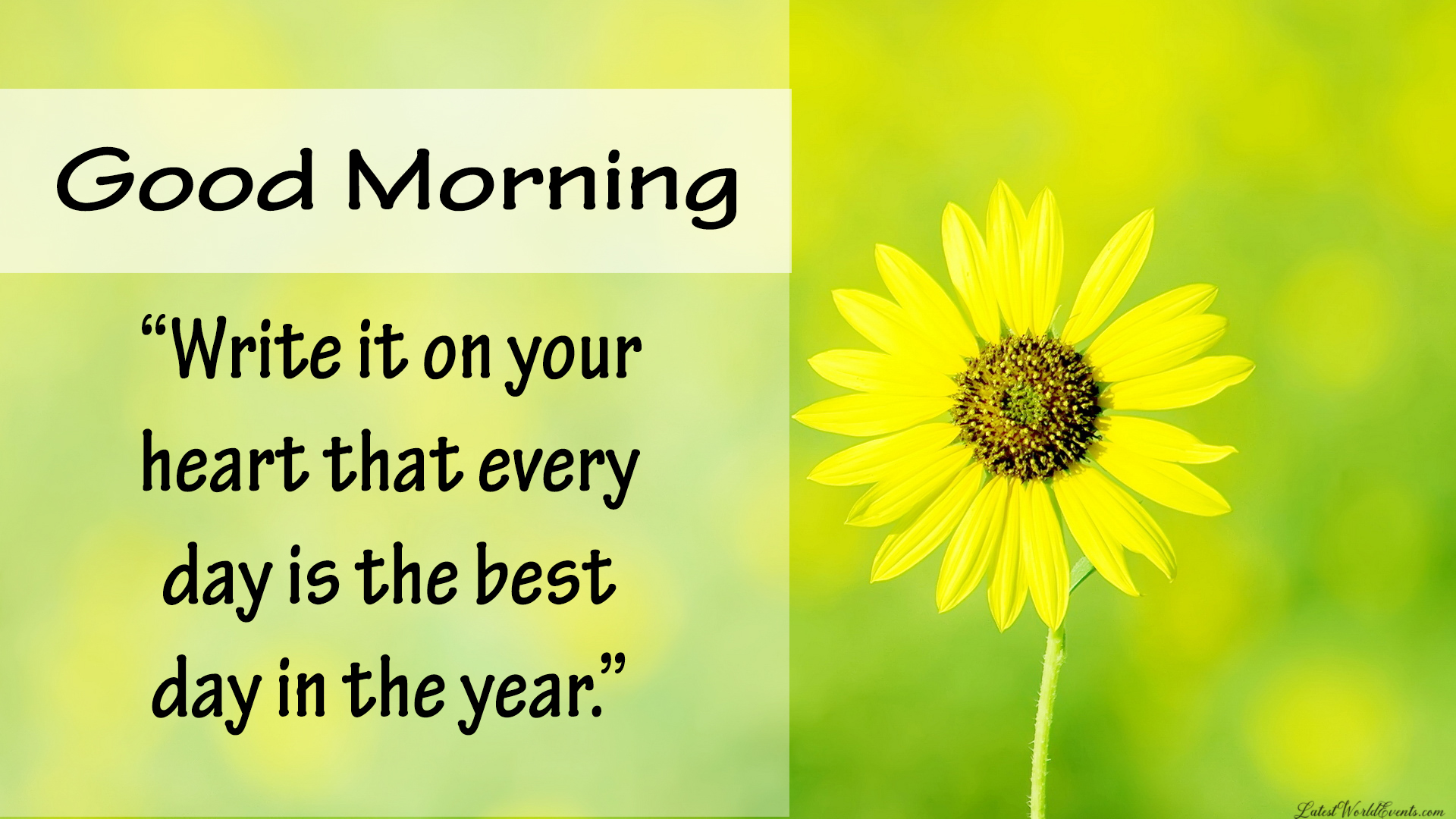 Download-good-morning-my friend-pictures-images-and-photos